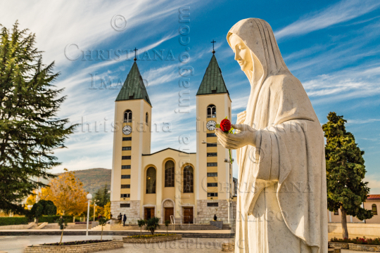 Blessed Virgin Mary with red rose