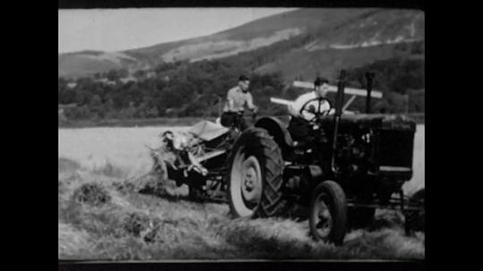 Scotland, Highlands, Farming, UK, 1940s