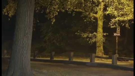 New York City, Central Park, Runner Jogging, Night, USA, 2010s