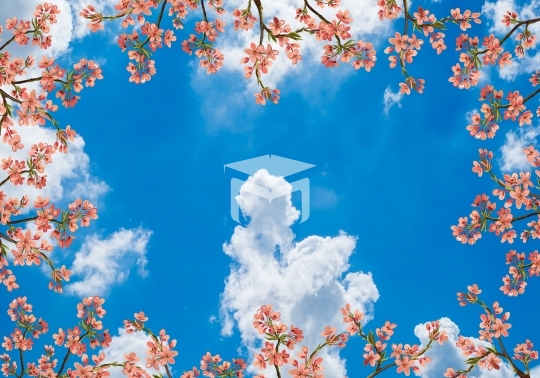 sky clouds and flower