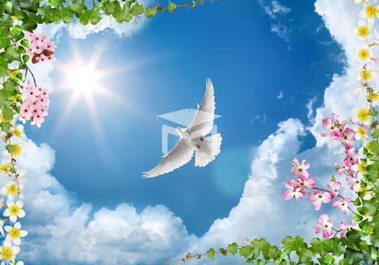 3d sky clouds and beautiful tree , flower