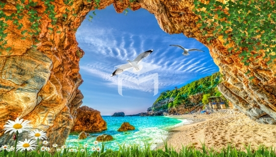 sea seagulls and nature landscapes