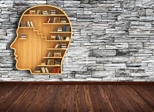library Room with brick wall