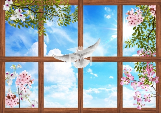3d ceiling sky and flower