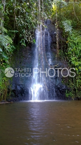 Tahiti, waterfall in the middle of forest