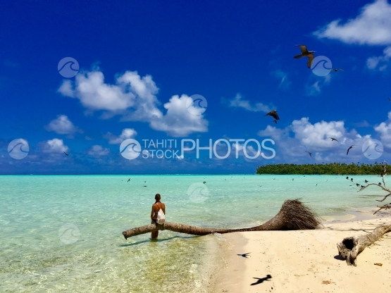 Young lady sitting on a palm tree, surrounded by birds flying