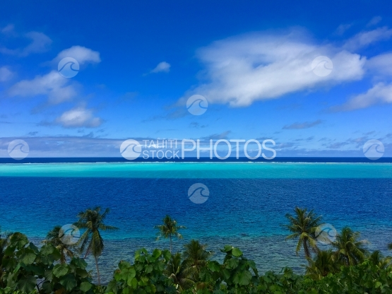 Huahine, view on the blue lagoon over the coconut trees plantation