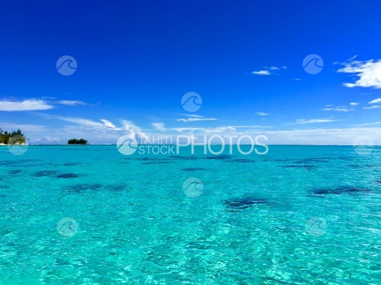 Turquoise water of the Lagoon of Moorea