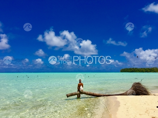 Beautiful young lady sitting on a dead palm in the lagoon of Tetiaroa