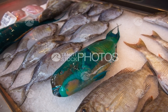 Market of Papeete, fish stall