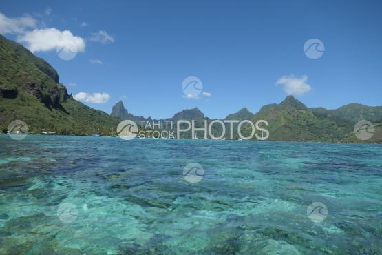 Lagoon of Moorea, opunohu bay