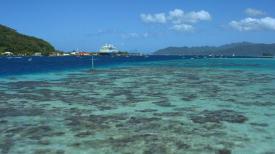 Raiatea, aerial view of the island and lagoon, and cruise ship at the dock