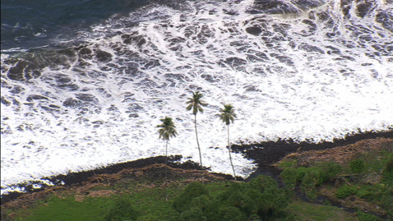 Aerial footage of Tahuata, three coconut trees by the sea, Marquesas islands
