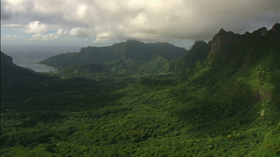 Aerial view of Cook s Bay from the Belvédère, Moorea, windward islands