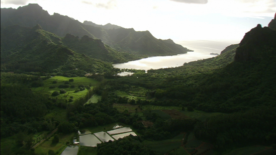 Moorea, aerial view of Opunohu Bay, windward islands