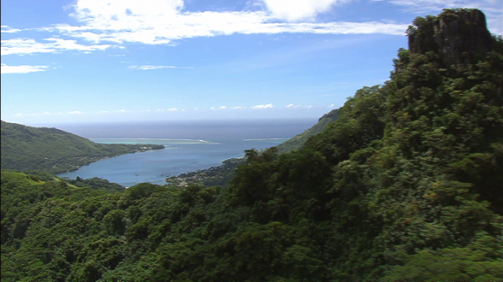 Aerial view of Moorea, Cook s Bay, windward islands