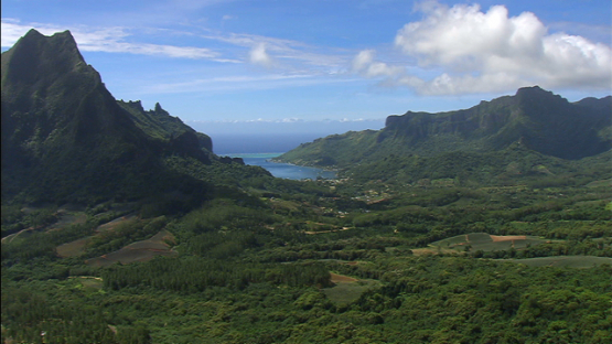 Moorea aerial view from the Belvédère, pineapple fields, windward islands