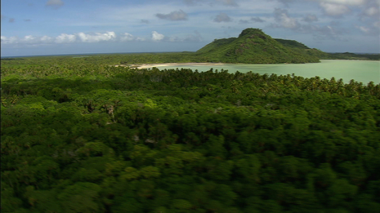 Aerial view of the coconut grove and pandanus of Maiao, by the sea, windward islands