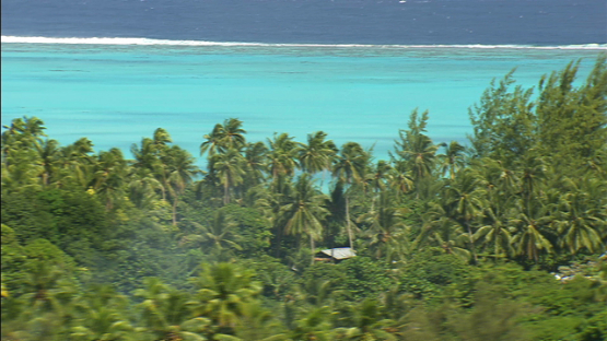 Maiao, aerial view of the lagoon behind the trees, windward islands