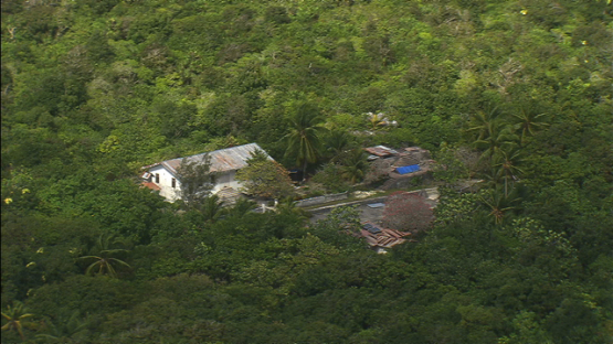 Makatea, aerial view of house in the bush, Tuamotu islands