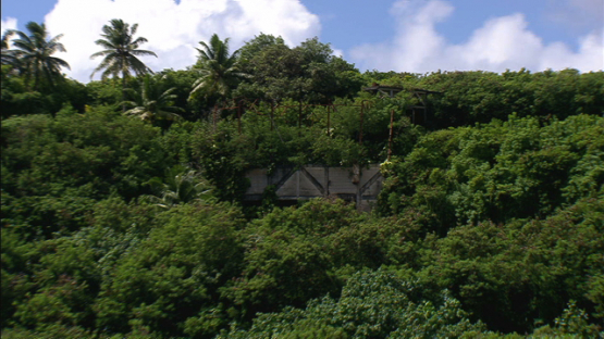 Makatea, aerial view of remains on the hill, Tuamotu islands