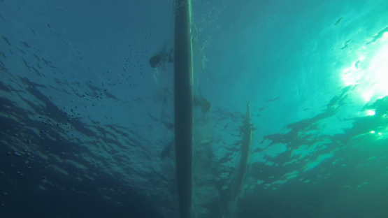 Tahiti, undersea view of tahitian canoe and paddlers training in the lagoon