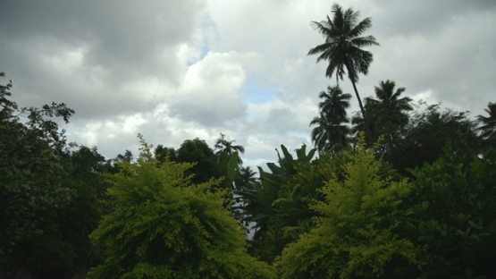 Tropical foret under cloudy sky, Marquesas islands, french Polynesia
