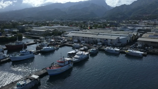 Tahiti, fishing boats in the harbour of Papeete, aerial drone video
