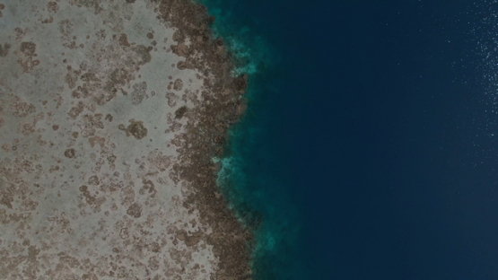Tahiti, aerial drone view above the coral reef and lagoon, Vairao