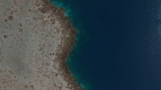 Tahiti, aerial drone view above the barrier reef and lagoon, Vairao