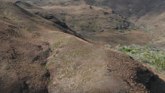 Aerial drone shot of two horse riders on the hills of Tahuata, Marquesas islands, French Polynesia, 2K7