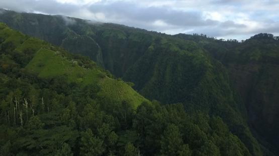 Aerial drone view of mountains of Tahiti, Pirae, French Polynesia
