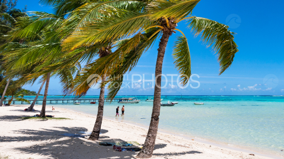 Moorea, View from the beach at les tipaniers