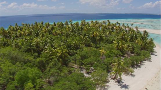 Aerial shot of a wild island of Tikehau, tuamotu atoll, French Polynesia