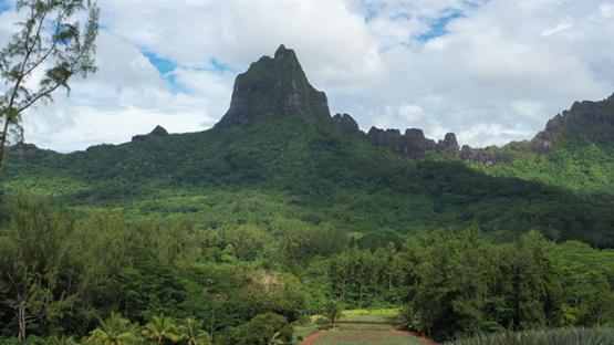 Aerial drone view of the peak of mountain Moua Roa, Moorea 4K UHD