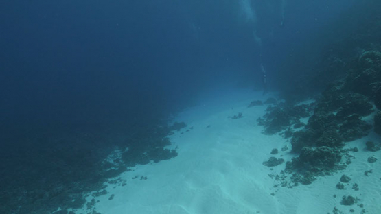 Fakarava, scuba diver drifting in the pass over the white sand