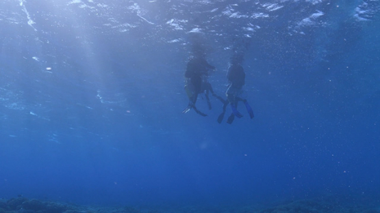 Fakarava, scuba divers floating and waiting at the surface in the pass, 4K UHD