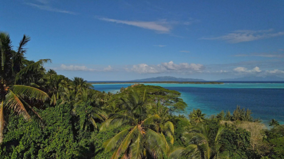 Bora Bora, aerial view of the lagoon over the coconut trees, 4K UHD