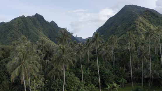 Tahiti, aerial view of Te Pari, lagoon and mountains, 4K UHD