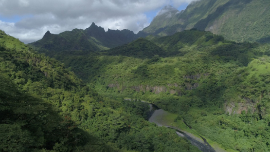 Tahiti, aerial view of the mountains of Valley of Papenoo, 4K UHD