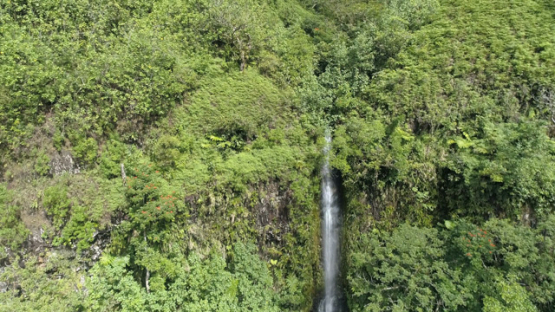 Tahiti, aerial view of waterfall in the Valley of Papenoo, 4K UHD