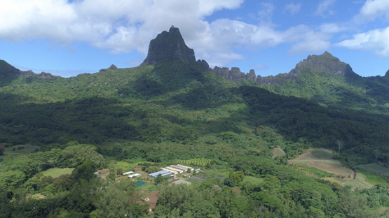 Moorea, aerial view of the mountain Mou a Roa, 4K UHD