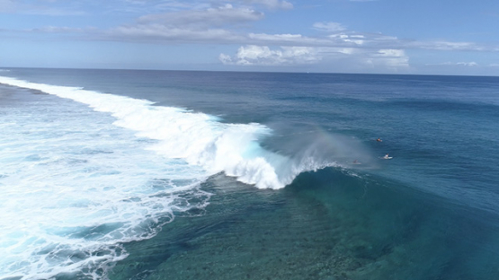 Moorea, aerial view of surfer in the wave of Haapiti, 4K UHD