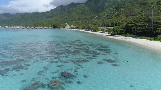 Moorea, aerial view of the beach of Temae and hotel, 4K UHD