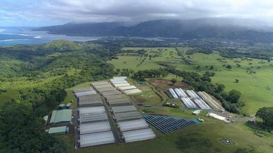 Peninsula of Tahiti, Aerial view of a farm of Taravao, 4K UHD