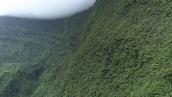 Tahiti, aerial view along the cliff around the lake Vaihiria, 4K UHD