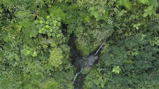 Tahiti, aerial view of waterfall near the lake Vaihiria, 4K UHD