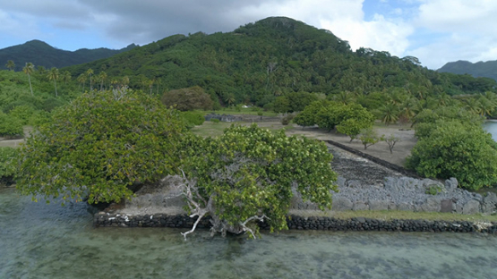 Raiatea, aerial view of the cultural site, the marae Taputapuatea, 4K UHD