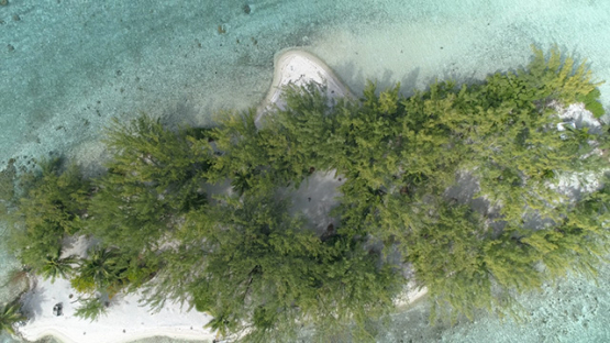 Tahaa, aerial view of an islet in the lagoon, 4K UHD