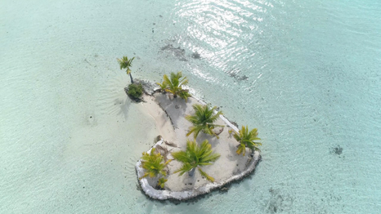 Tahaa, aerial view of an islet and coconut trees in the lagoon, 4K UHD